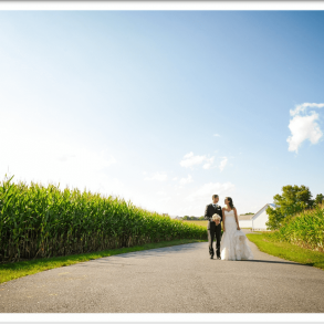 bride and groom in corn field